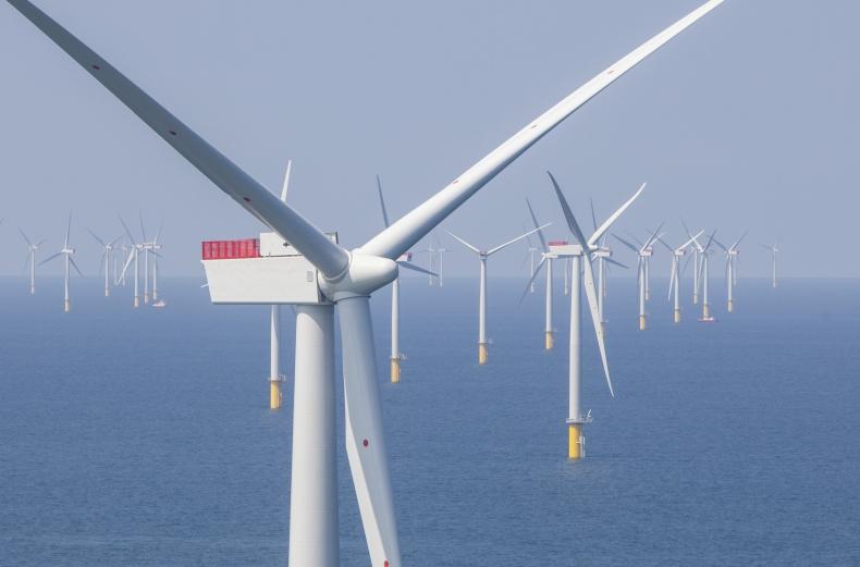 Polska ma dobre warunki do rozwoju morskich farm wiatrowych. Do 2050 roku ich moc może sięgnąć 20 GW - GospodarkaMorska.pl