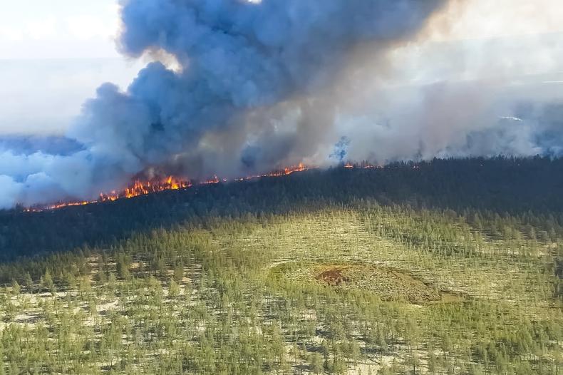 Pożary arktyczne latem 2020 r. ustanowiły nowe rekordy emisji - GospodarkaMorska.pl