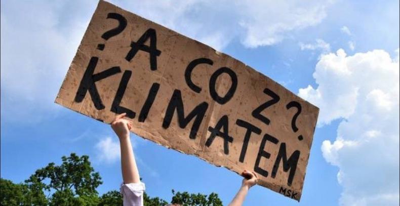 Młodzi Polacy ruszają dziś na ulice - dla klimatu - GospodarkaMorska.pl