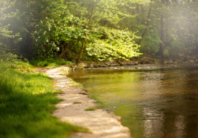 Monokultury zagrażają właściwemu obiegowi wody - GospodarkaMorska.pl
