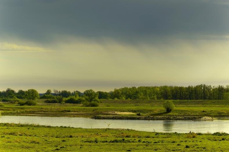 Rzeka nas urzekła – podsumowanie akcji WWF - GospodarkaMorska.pl