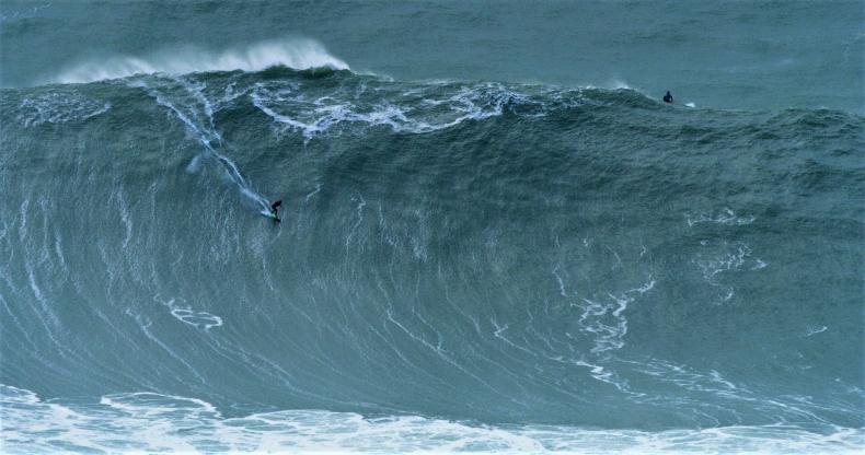 Surferzy stawiają czoła gigantycznym falom w Portugalii - policja rozpędza tłumy gapiów [wideo] - GospodarkaMorska.pl