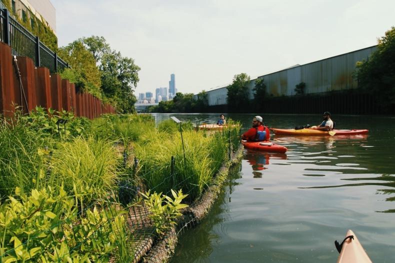 Pływające ogrody nie tylko przyjemne dla oka - mają wpływ na jakość wody  - GospodarkaMorska.pl