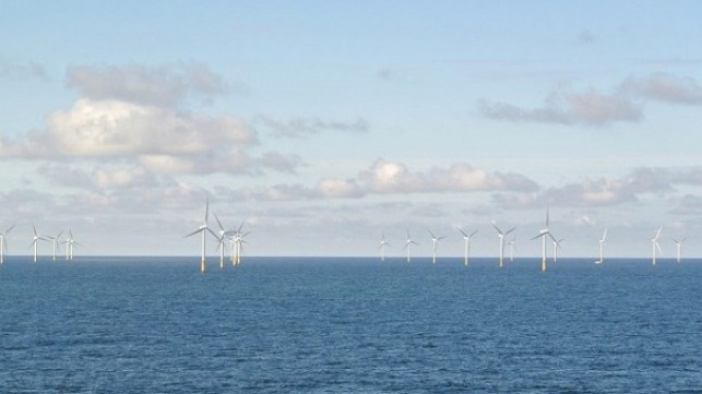 Unia Europejska chce mocniej inwestować w morską energię w celu spełnienia celów klimatycznych - GospodarkaMorska.pl