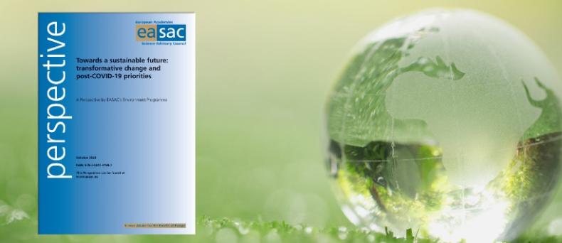Pandemia a zrównoważony rozwój w Europie. Nowy raport EASAC - GospodarkaMorska.pl