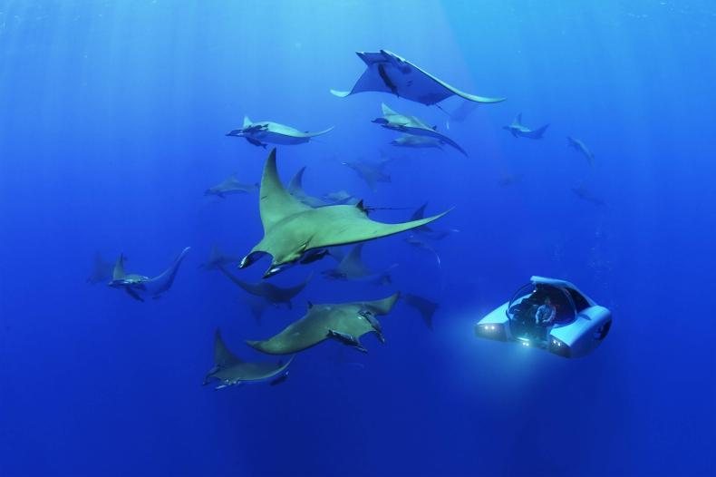 Poznajcie Nemo - najlżejszy statek podwodny [foto. wideo] - GospodarkaMorska.pl