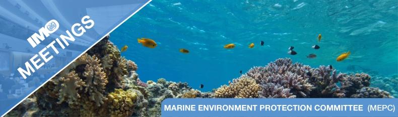 Najważniejsze postanowienia z 75. sesji Komitetu Ochrony Środowiska Morskiego MEPC - GospodarkaMorska.pl