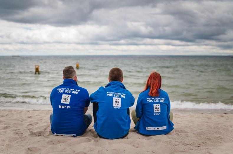 Od 10 lat chronią bałtyckie plaże - Błękitny Patrol WWF w Międzynarodowy dzień wolontariusza - GospodarkaMorska.pl