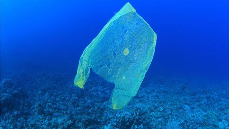 Raport parlamentu: Francji grozi niekontrolowane zanieczyszczenie środowiska plastikiem - GospodarkaMorska.pl