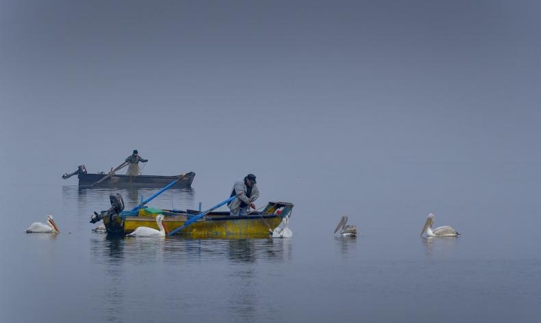 UE nie może być bezczynna wobec rybołówstwa - GospodarkaMorska.pl