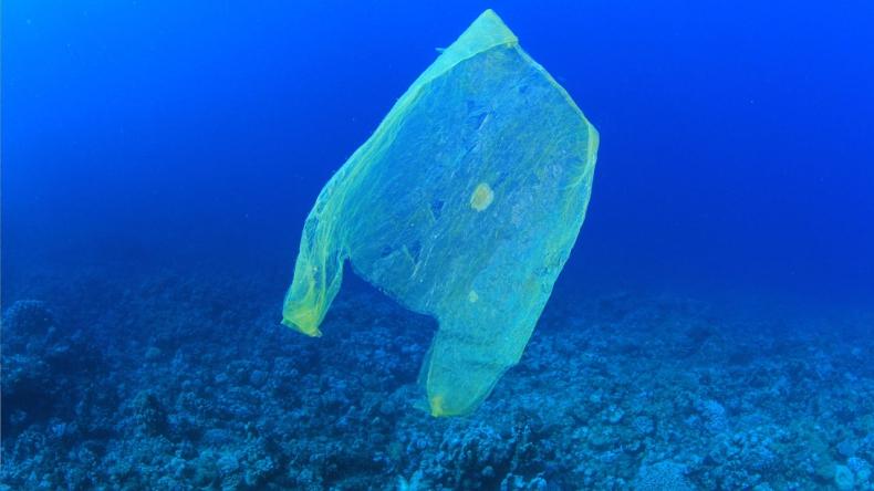 Mikroplastik sięga największych głębin - GospodarkaMorska.pl