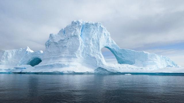 Pod lodami Antarktydy naukowcy odkryli przez przypadek nieznane zwierzęta - GospodarkaMorska.pl