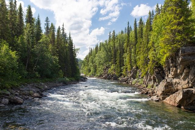 """Kanada: Rzeka uzyskała osobowość prawną - może """"swobodnie płynąć"""" i być reprezentowana przed sądem - GospodarkaMorska.pl"""