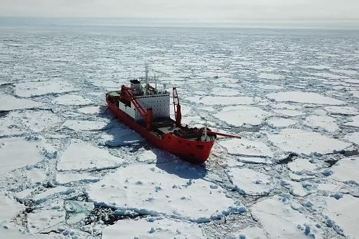 Wzrost żeglugi w rejonie Przejścia Północno-Zachodniego zagraża wrażliwemu ekosystemowi arktycznemu - GospodarkaMorska.pl