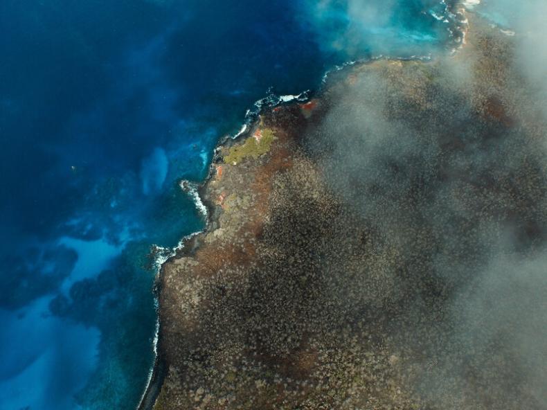 Leonardo Di Caprio odbuduje ekosystem Wysp Galapagos. Pula inwestycji sięgnie 43 mln dolarów - GospodarkaMorska.pl