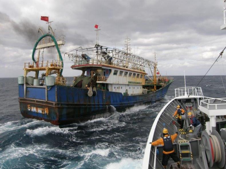 Wieje ze Wschodu, ryby chodu. Nielegalne połowy chińskich rybaków  - GospodarkaMorska.pl