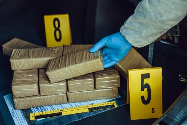 Celnicy udaremnili przemyt 1,5 tony kokainy w porcie Rotterdamu - GospodarkaMorska.pl