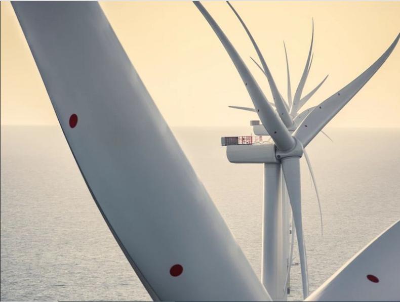5-letnie kontrakty cPPA na zakup energii z największej morskiej farmy wiatrowej w Szkocji - GospodarkaMorska.pl