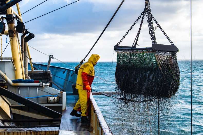 Rybołówstwo wymaga transformacji, aby chronić niebieski węgiel - GospodarkaMorska.pl