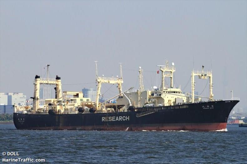 Nisshin Maru. Czy ostatni statek-przetwórnia wielorybów będzie miał następcę? - GospodarkaMorska.pl