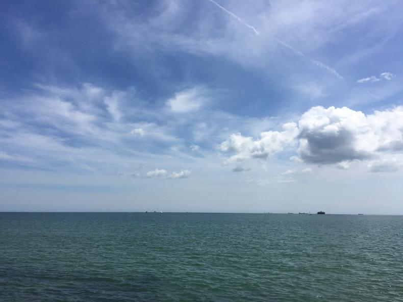 Australijka McCardel po raz 44. przepłynęła kanał La Manche - GospodarkaMorska.pl